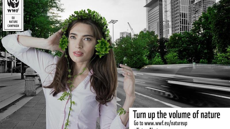 """""""Turn up the volume of nature"""" with WWF, a campaign made by ThinkDigital Romania for 18 european countries"""
