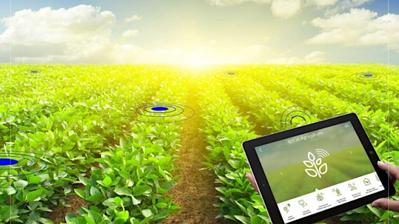 It's time for AgriTech: fascinating technologies used by companies that are bringing Agriculture in the 21st century
